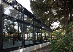 Glass walls provide woodland views from inside this market by Japanese architect Takuya Hosokai