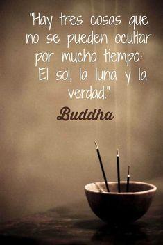 Budha#frases