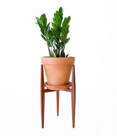 PlanterStandwPlant (1 of 1).jpg