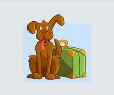 Overweegt u de aanschaf van een hond? Gun een hond tweede kans en koop niet, maar adopteer een hond. Meer informatie vindt u op onze website.