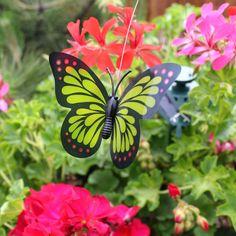 Motylek ogrodowy na baterię słoneczną. :)