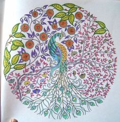 Find This Pin And More On Secret Garden An Inky Treasure Hunt Coloring Book