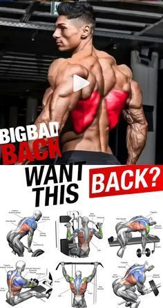 Best workout for back in gym Back is one of the most important muscle to train because most of us sit all day long at work and our shoulders. Big Back Workout, Lat Workout, Aerobics Workout, Biceps Workout, Workout Fitness, Chest Workouts, Fit Board Workouts, Fun Workouts, Back Workouts