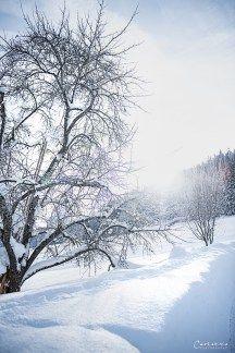 Winterwonderland, Winterlandschaft, Schneelandschaft, Winter, Schnee, Naturhotel Forsthofgut, Austria, Österreich, Salzburg, Lungau, Zell am See Hotel Wellness, Zell Am See, Winter Schnee, Spa Hotel, Foodblogger, Salzburg, Snow, Outdoor, Professional Photography