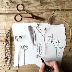 line drawings Cow Parsley, Simple Line Drawings, Mark Making, Simple Lines, Moose Art, Doodles, Hair Accessories, Instagram Posts, Artist