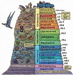 The geologic time scale helps scientists try and understand earth& past. Human beings, recently on the scene, are but a small piece of earth& history. Earth Science, Science And Nature, Evolution, Historia Universal, Teaching Science, Mad Science, Science Education, Rocks And Minerals, Archaeology
