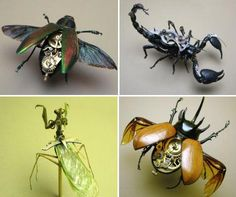 'Insect Lab' by Mike Libby  ...he combines genuine insects and mechanical or electronical components, in order to create cybernetic sculptures —