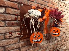 It's Halloween time! Are you ready for a night of trick or treating? We are really excited about it! Container Plants, Hanging Plants, Working Area, Interior Accessories, Outdoor Ideas, Bloom, Pumpkin, Gardening, Pockets