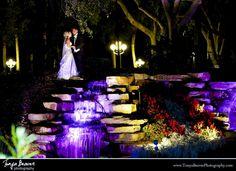 sawgrass marriott wedding030