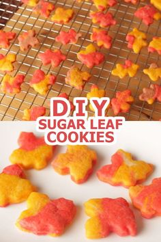These Sugar Leaf cookies are not just cute and colorful but also delicious and fun to make! Try baking this for Fall or Thanksgiving using 5 ingredients only! Enjoy! :)
