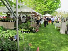 """""""Trade Secrets"""" rare plant and garden antiques sale held just over the border in Sharon CT every May."""