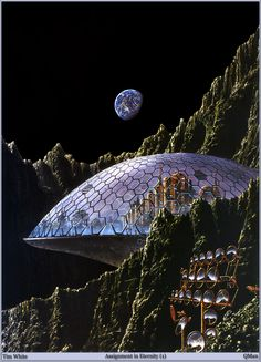 Tim White - Assignment in Eternity