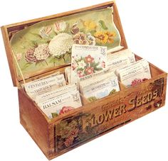 Flower Seeds vintage