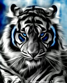New wild animal art sun ideas Lion Live Wallpaper, Wild Animal Wallpaper, Tiger Wallpaper, Tiger Images, Tiger Pictures, Big Cats Art, Cat Art, Majestic Animals, Animals Beautiful