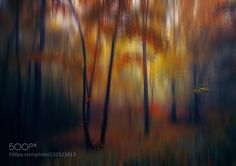 - Pinned by Mak Khalaf ///// Abstract 2000candbmor by Floo