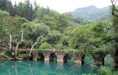 """Los bosques a cubrir el 25% de China en un proyecto de """"eco-civilización"""""""