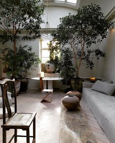 Home Interior Hallway trees indoors.Home Interior Hallway trees indoors Garden Room, Interior And Exterior, Indoor Trees, Home Remodel Costs, Interior Plants, Exterior Design, Exterior, Rustic House, Asian Home Decor