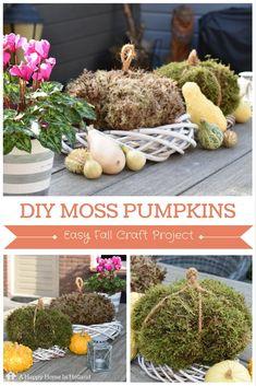 DIY Moss Pumpkins - easy step by step tutorial
