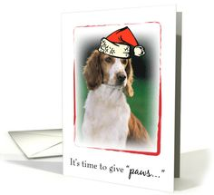 Merry Christmas with Welsh Springer Spaniel Dog and Santa Hat, Animals card