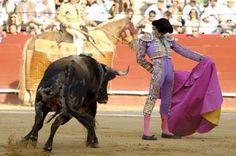 El diestro JOSÉ TOMÁS está anunciado 2 tardes en la próxima Feria Taurina de Valladolid ¿Te lo vas a perder? #TienesQueVenir #TienesQueVenir #FeriaTaurina #TienesQueVenir #FeriaTaurina #NuestraSeñoraDeSanLorenzo