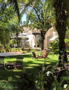 There are more than just beautiful beaches in Playa Dorada, like the gardens at Casa Colonial.
