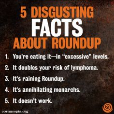 Pesky weeds popping up in your yard? Here's what to not reach for—Roundup. See more: http://www.cornucopia.org/2014/06/5-disgusting-facts-roundup