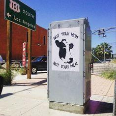 Výsledek obrázku pro not your mom not your milk street art
