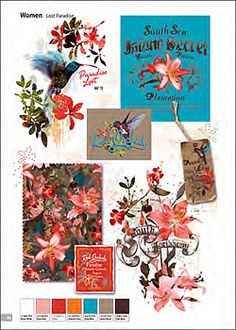 Trendsetter - Women Graphic Coll Vol 1 {DVD} Graphic Design