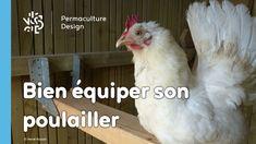 Hervé Husson, expert passionné, passe en revue les meilleurs équipements à inclure dans votre poulailler pour qu'il soit pratique à la fois pour vos poules et pour vous.