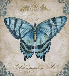 Lovely blue butterfly painted by Jean Plout. Textured canvas with Hydrangeas flowers in background. Old world script that says Bleu papillon.French for Blue Butterfly. Butterfly Canvas, Butterfly Painting, Blue Butterfly, Butterfly Crafts, Artist Canvas, Canvas Art, Images Vintage, Vintage Art, Blue Wings