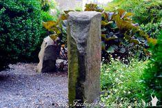 Mit Steinen im Garten Akzente setzen - Cluster, Plants, World, Plant, Planting, Planets