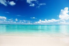 WALL MURAL INFO:  The White Sand Beach wall mural from Eazywallz.com is an excellent...