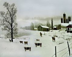 The Dairy Farm. Winter Landscape by Nellie Vin