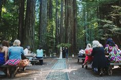 Rustic-bohemian Redwood forest ceremony