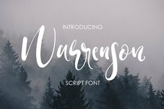 Warrenson Script Font @creativework247