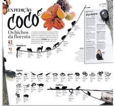Expedição Cocó