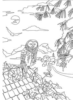Free coloring page coloring-adult-owl-on-a-roof-by-marion-c. A beautiful Own on a roof, to print & color, an original coloring page by Marion C.