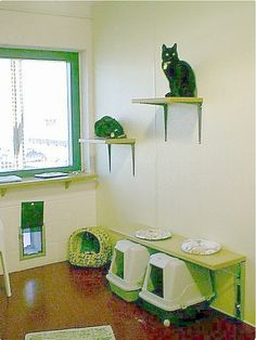 Cat room with direct access to the garden. (click for tons more DIY ideas for scratchers & cat trees, etc.)