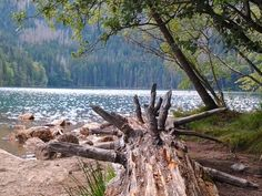 The beauty of Czech republic. ''Black lake''