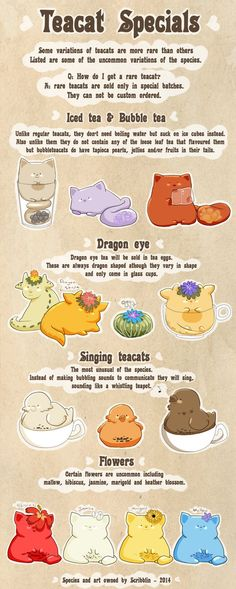 Teacat specials info [Closed species] by scribblin on deviantART