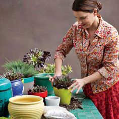 Container Gardening: Judy Kameon of Elysian Landscapes + west elm