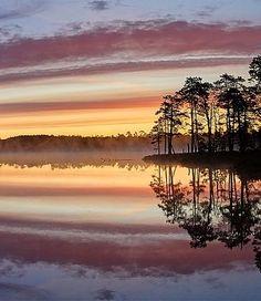 sunrise:  Meenikunno Nature Park, southeast Estonia