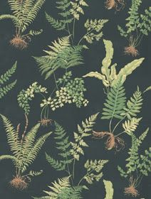 Ferns - Thibaut Wallpapers - A botanical style fern motif design - in fresh greens set on a deep black background. Please request sample for true colour match. Delivery for this American wallcovering is working days. Fern Wallpaper, Feature Wallpaper, Botanical Wallpaper, Home Wallpaper, Fabric Wallpaper, Botanical Art, Black Wallpaper, Flower Wallpaper, Designer Wallpaper