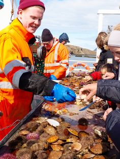 Snaefellsness Peninsula Iceland, Viking Sushi Adventure