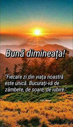 Buna dimi, sufletel! Pup dulce dulce până la sânge! Ai grija de tine 😘😚! Maxime, Message Card, Cool Words, Good Morning, Qoutes, Messages, Day, Books, Flowers