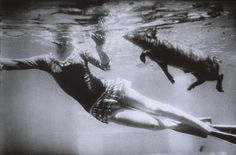 maybe i should throw Simon in the pool (Garry Winogrand, San Marcos, Texas, 1964 )