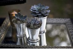 Succulents and Vintage Silver- I live the mossy look around so you dont see the dirt