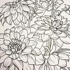 #DAHLIAS! #floral Alexandra Doffing