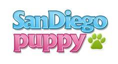 San Diego Puppy