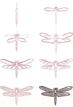 how to draw a dragonfly #journal: